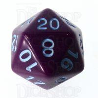 Role 4 Initiative Opaque Purple & Blue D20 Dice