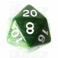 Role 4 Initiative Emerald Dragon Shimmer D20 Dice