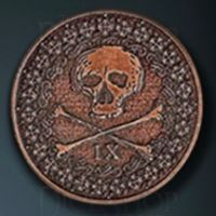Pirate Legendary Metal Copper Coin