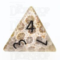 TDSO Fossilised Coral with Engraved Numbers 16mm Precious Gem D4 Dice